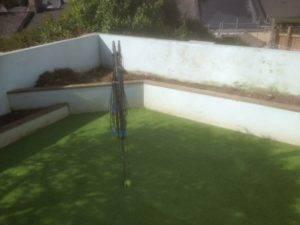 new turf in garden