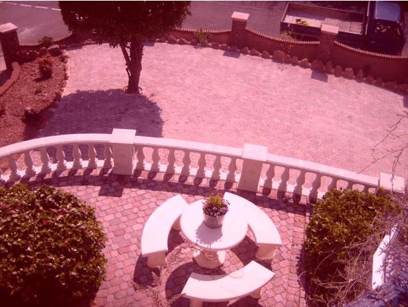 garden bench and round hedge