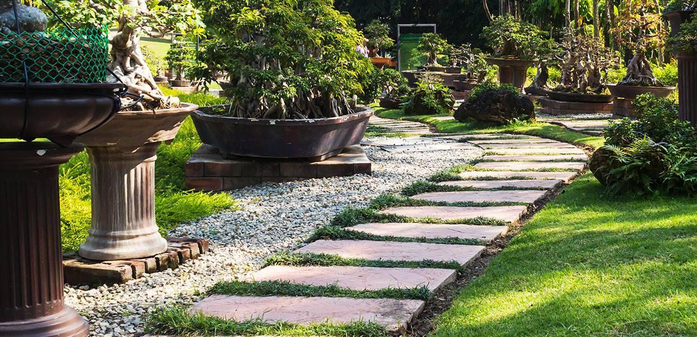 garden with paving slab walkway